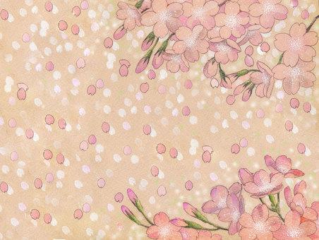 Flowers _ Sakuraguki