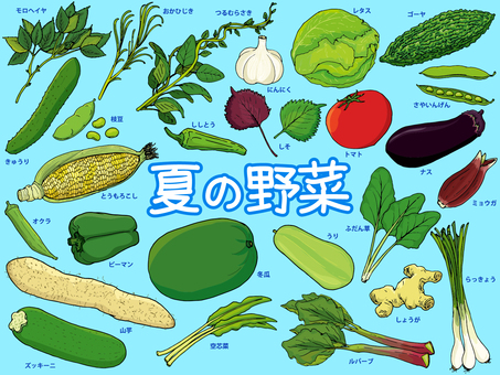 Summer vegetables / northern vegetables