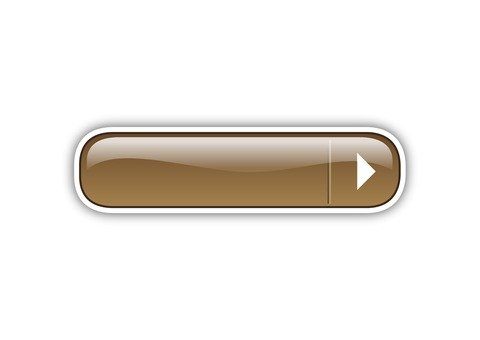 Playback button (brown)