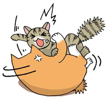 Cat's quarrels 2