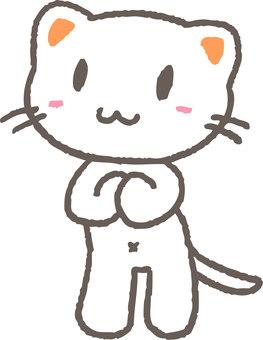 기도 고양이