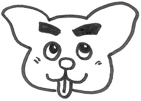 강아지의 재미있는 얼굴 dog