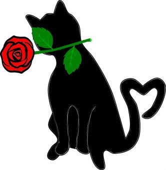 Black Roses Roses