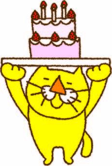 Yellow cat and cake