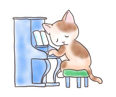 Piano cat 13