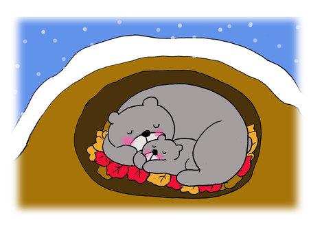 Bear's hibernation 1