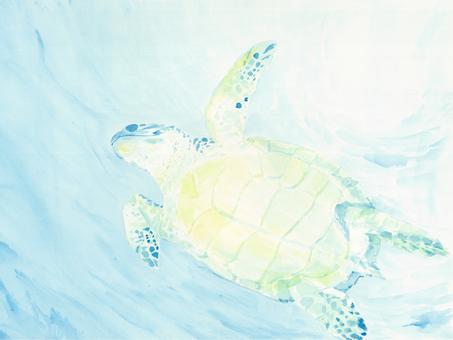 수채화 바다 속을 헤엄 치는 거북이