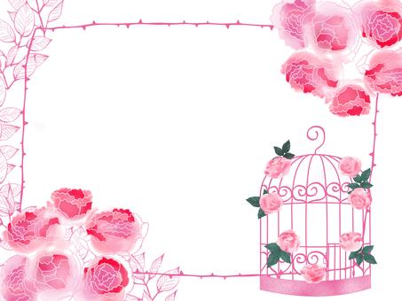 Fashionable bird cage card
