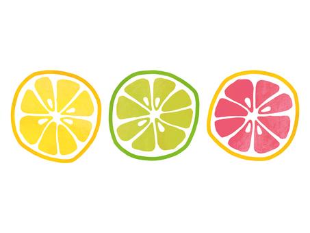 자몽 / 레몬 / 라임