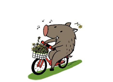 Fun riding a bicycle