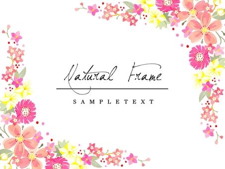 天然框架材料03粉紅色