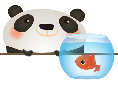 Look at the panda goldfish