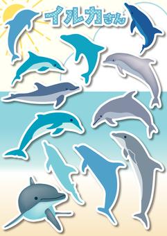 Dolphin-01