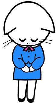 Bowing greetings cat cat greeting