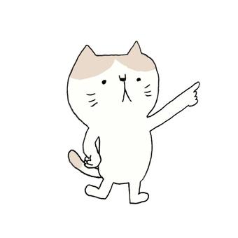 Pointing finger cat