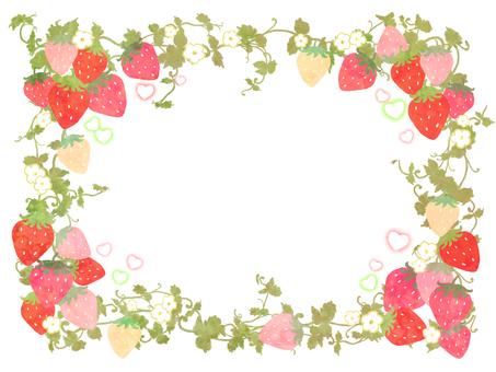 Strawberry Frame 01
