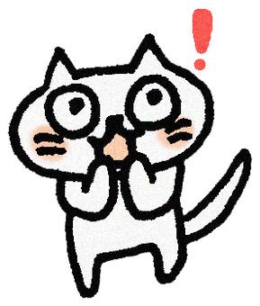 Well! Cat