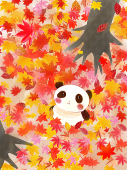 Panda in autumn leaves forest