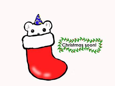 Christmas soon!