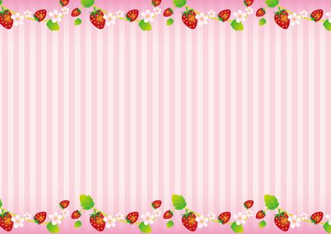 Spring Frame 036 Ichigo