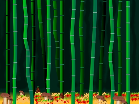 Today's bamboo grove