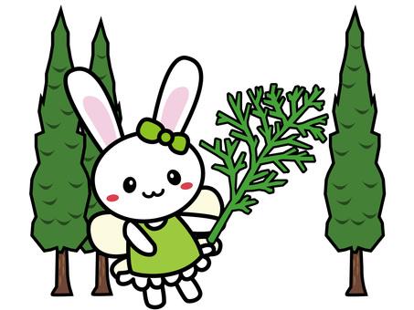 Aroma Usako (Cypress)
