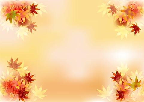 Autumn leaves 345