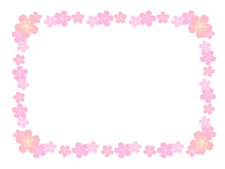 Sakura Frame 4