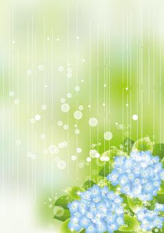 雨の中の紫陽花73