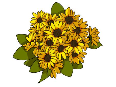 Sunflower bouquet (color)