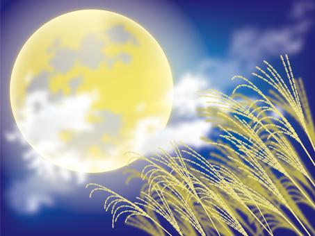 Moon and Suki 3