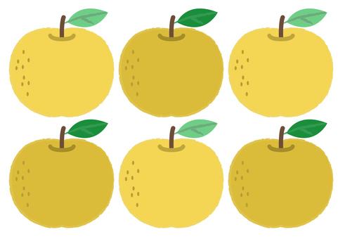 Pear_ 배 6