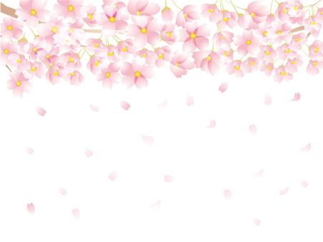 벚꽃 모양 3-2-4