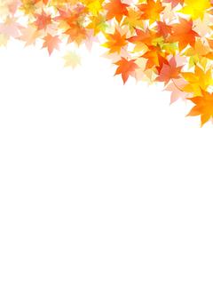Fall image material 7