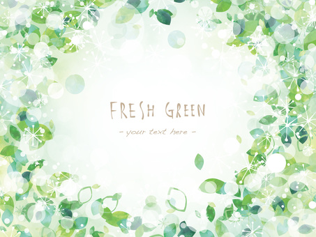 Fresh green frame ver11
