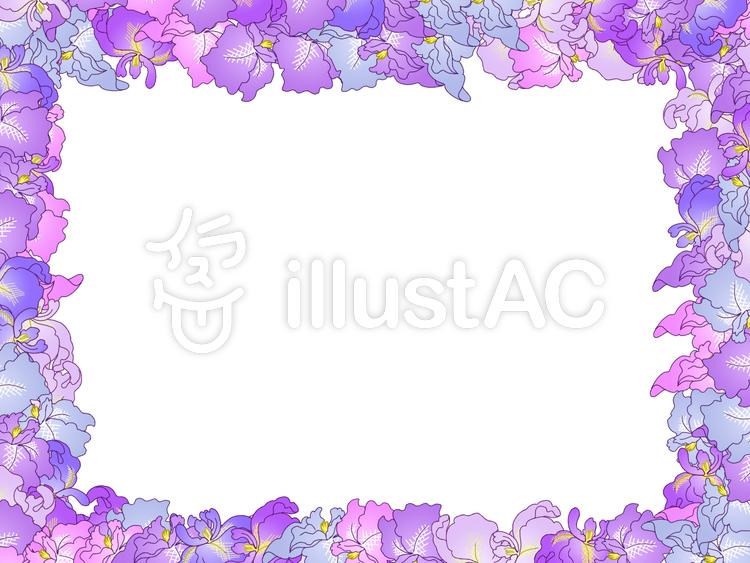 菖蒲の花のフレームイラスト No 441567無料イラストならイラストac