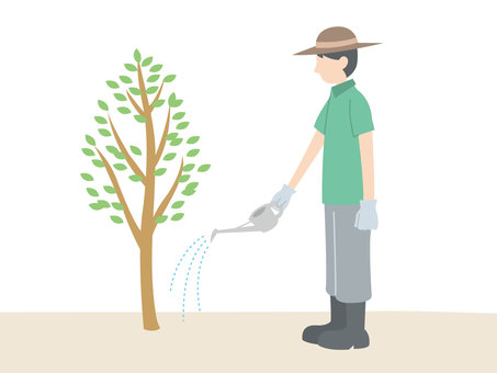 Person / afforestation / watering