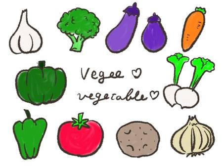 Vegetable hand drawn illustration