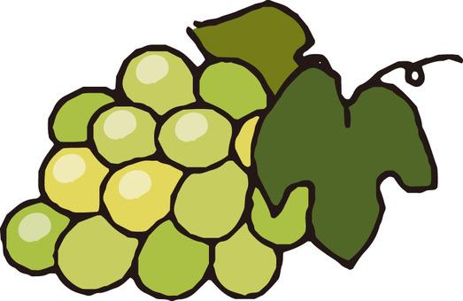 Fruit (Muscat)