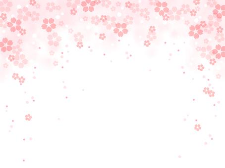Sakura 107