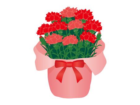 Flower basket carnation
