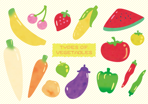 Vegetable fruit illustration set