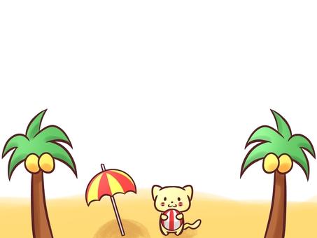 Cat and beach