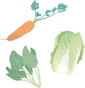 Seasonal vegetables Winter illustration