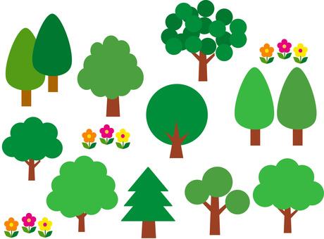 나무 소재