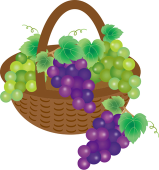 Grapes and baskets
