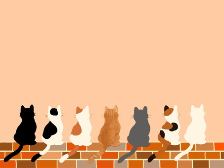 Cat and brick series!