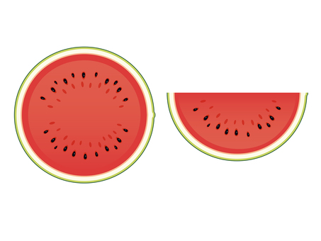 Watermelon cross section illustration