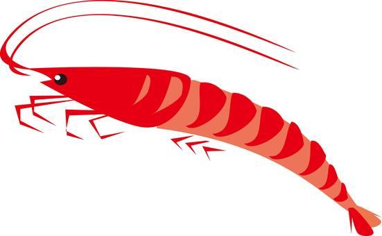 蝦,鮭魚,蝦,蝦