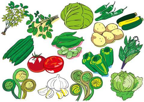 Seasonal vegetables in early summer